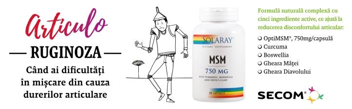 msm-1920x600